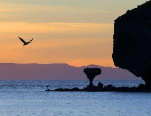 Reise Mexiko Urlaub Baja California