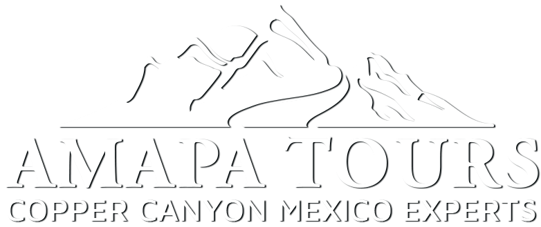 Amapa Tours
